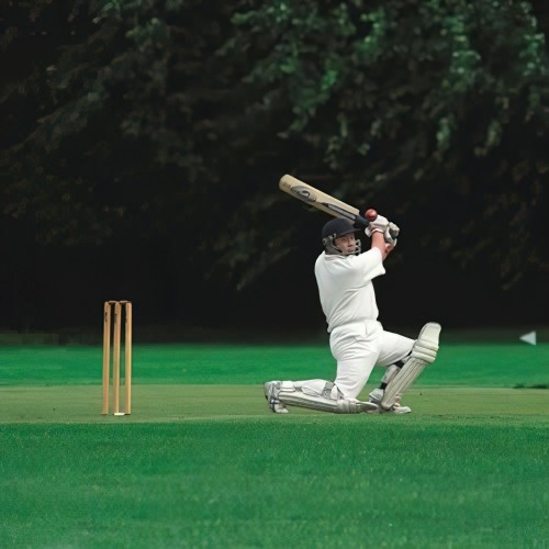 Cricket All Purpose Outfield