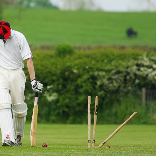Cricket Wicket Prosports
