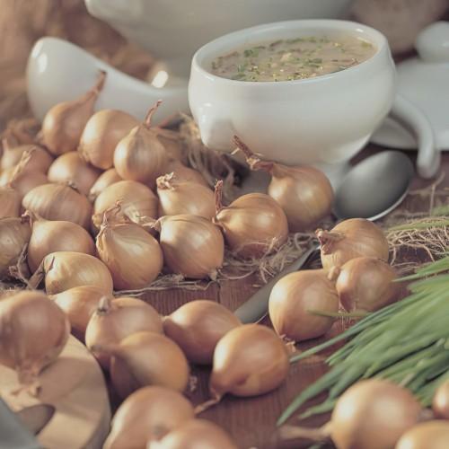 Golden Gourmet Shallot Sets