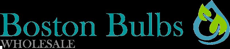 The Boston Bulb Company Ltd